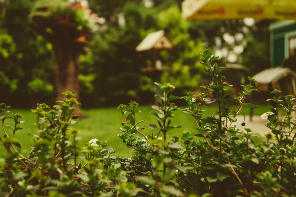 Quelle taille pour un abri de jardin ?