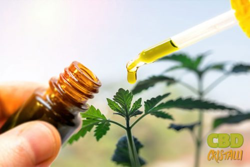 Quand utiliser l'huile de CBD?